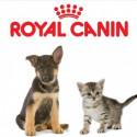 Роял Канин - Royal Canin